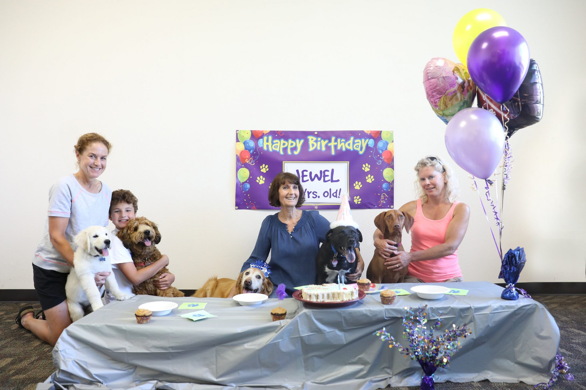 Doggie Parties Celebration