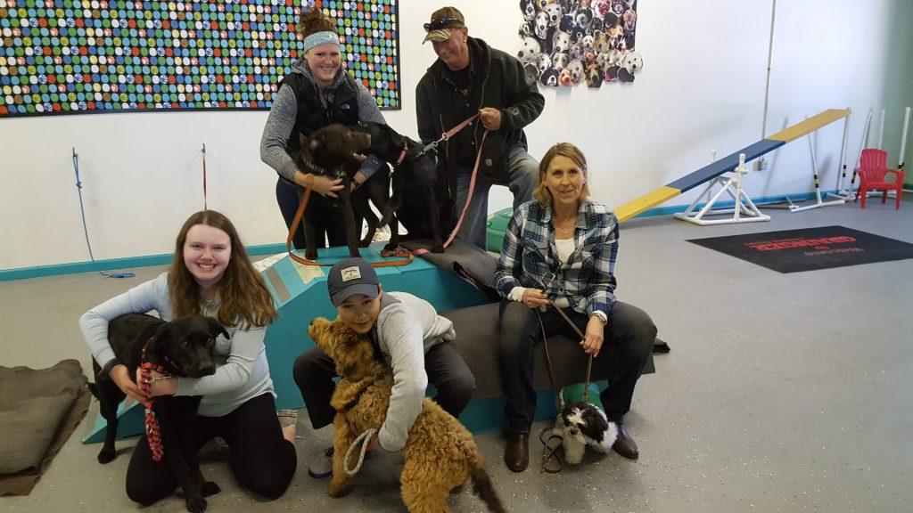Fun with Group Dog Training