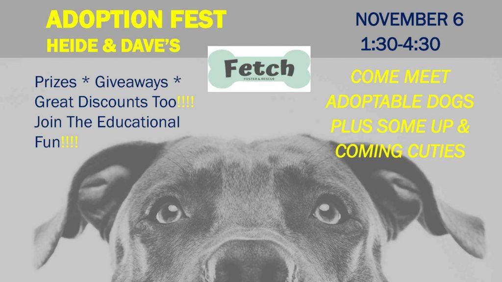 Adoption Fest